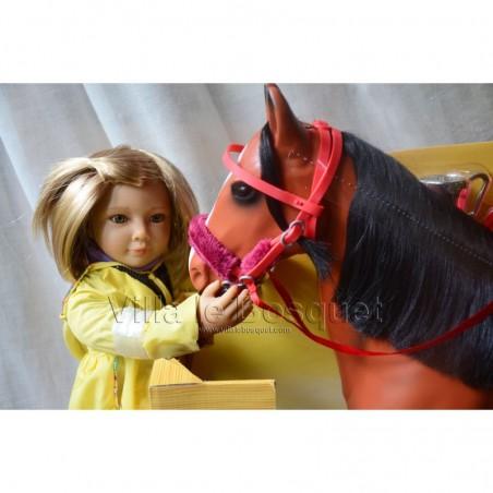 Accessoires de mode et jouets pour les poupées.